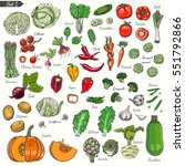 big set of colored vegetables... | Shutterstock .eps vector #551792866