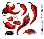 chili pepper hand drawn vector... | Shutterstock .eps vector #551809102
