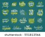 vector eco  organic  bio logos... | Shutterstock .eps vector #551813566
