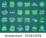 vector eco  organic  bio logos... | Shutterstock .eps vector #551813596
