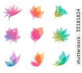 Stock vector pastel nature elements for design vector illustration eps 55181824