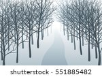 way through misty forest. road...   Shutterstock .eps vector #551885482