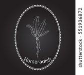 horseradish  cochlearia... | Shutterstock .eps vector #551936872