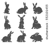 Stock vector set of rabbit icons isolated on white background vector illustration 552101455