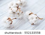 delicate white cotton flowers... | Shutterstock . vector #552133558
