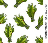 pattern with aromatic herb ...   Shutterstock .eps vector #552167242