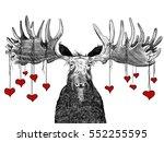 Hand Drawn Valentines Day...