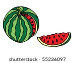 it s the cutting watermelon | Shutterstock .eps vector #55236097