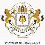 classy emblem  vector heraldic...   Shutterstock .eps vector #552383716
