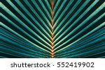 Stock photo striped of palm leaf abstract green texture background vintage tone 552419902