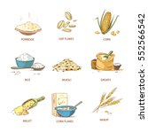 cartoon ripe ears of cereals ... | Shutterstock .eps vector #552566542