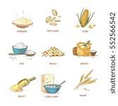cartoon ripe ears of cereals ... | Shutterstock .eps vector #552566542