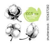 hand drawn set of cotton... | Shutterstock . vector #552637282