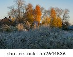 Sunny Crisp Autumn Morning...