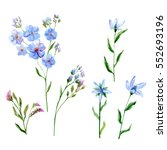 set of blue flowers  forget me... | Shutterstock . vector #552693196