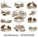 vector design elements with... | Shutterstock .eps vector #552693628