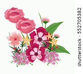 collection flowers ornament... | Shutterstock .eps vector #552705382