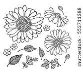 sunflower. floral print.... | Shutterstock .eps vector #552711388
