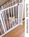a child safety gate and stairs | Shutterstock . vector #552798772