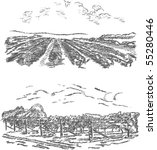 vintage   vineyard and castle ... | Shutterstock . vector #55280446
