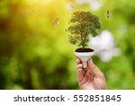 hand holding light bulb on tree ... | Shutterstock . vector #552851845