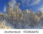 snow covered birch forest ... | Shutterstock . vector #552866692