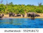 watering in the okavango delta.... | Shutterstock . vector #552918172
