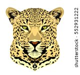 portrait of a spotted leopard | Shutterstock .eps vector #552931222