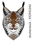 portrait lynx | Shutterstock .eps vector #552931342