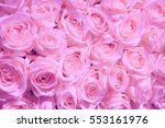 pale pink roses in a wedding... | Shutterstock . vector #553161976