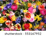 spring flowers in a... | Shutterstock . vector #553167952