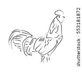 isolated outline of a rooster ... | Shutterstock .eps vector #553181872