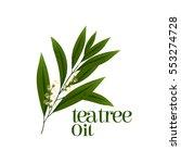 tea tree leaf vector | Shutterstock .eps vector #553274728