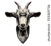goat head vector color drawing | Shutterstock .eps vector #553305736
