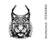 lynx head black and white... | Shutterstock .eps vector #553305802