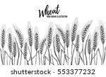 hand drawn vector illustration  ... | Shutterstock .eps vector #553377232