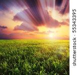 beautiful landscape under... | Shutterstock . vector #55343395