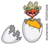 Ugly Bird Hatching From Egg An...