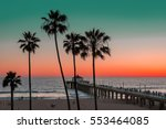 palm trees and piar at... | Shutterstock . vector #553464085