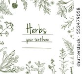 herbs and flowers painted green ...   Shutterstock .eps vector #553479058
