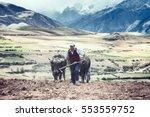 sharecropper plowing a field... | Shutterstock . vector #553559752