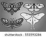 set of decorative butterflies.... | Shutterstock .eps vector #553593286