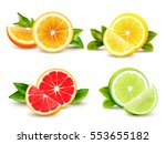 citrus fruits halves and... | Shutterstock .eps vector #553655182