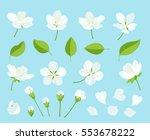 set of beautiful cherry tree... | Shutterstock .eps vector #553678222