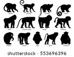 big set of silhouettes of... | Shutterstock .eps vector #553696396
