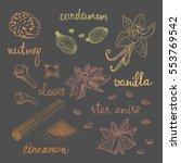 set of spices  nutmeg  cardamom ... | Shutterstock .eps vector #553769542