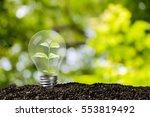 light bulb glowing in soil  ... | Shutterstock . vector #553819492
