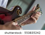 Musician Playing A Mandolin