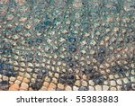 crocodile skin detail texture background - stock photo