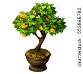 bonsai small tree with fruit of ...   Shutterstock .eps vector #553868782